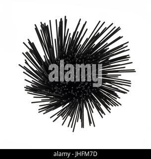 Sur la tête de voir l'encre de seiche, spaghetti noir sur fond blanc fond isolé dans une spirale ronde format. Banque D'Images