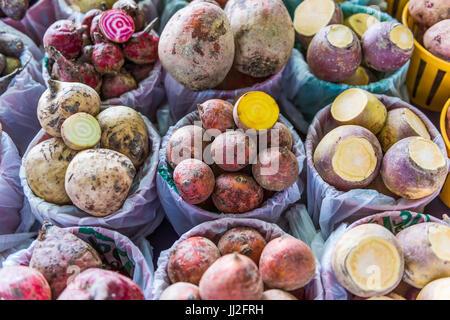 Libre de différents types de navets légumes racines à l'écran dans des paniers à farmers market Banque D'Images