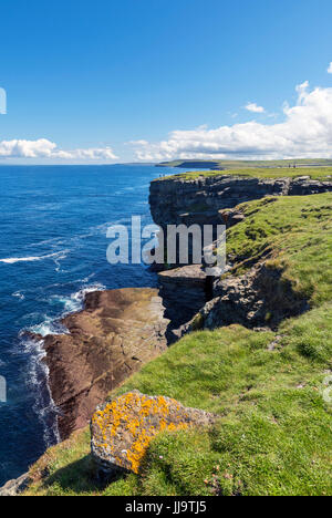Falaises de l'Brough de Birsay regarder en arrière vers le continent, Orkney, Scotland, UK Banque D'Images