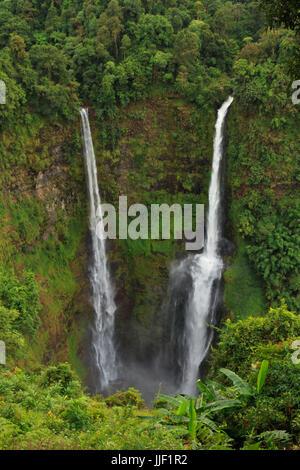 Paysage de cascade de Tad Fan