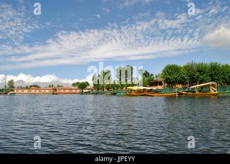 Dal Lake, à Srinagar, Jammu-et-Cachemire, l'Inde Banque D'Images