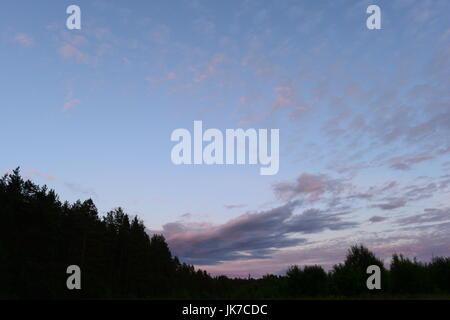 Coucher du soleil dans le ciel au-dessus de la forêt un soir d'été Banque D'Images