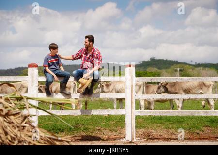 La vie quotidienne des agriculteurs avec des vaches à la campagne. Le travail des paysans d'Amérique du Sud avec Banque D'Images
