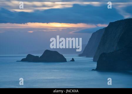 Hamakua Coast vue du sentier de la Vallée de Pololu, Grande Île d'Hawaï.
