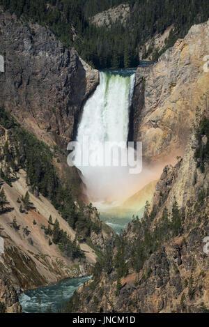 Lower Falls de la rivière Yellowstone, avec Rainbow au pied des chutes, des artistes Point, le Parc National de Banque D'Images