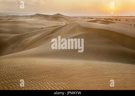 La première lumière sur les dunes à Eucla. Banque D'Images