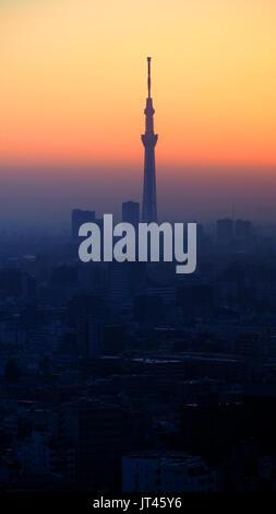 Silhouette de Tokyo sky tree et bâtiment en ville paysage coucher du soleil. Banque D'Images
