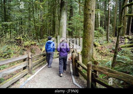 Les visiteurs de marcher sur un sentier en forêt pluviale ancienne protégée de Cathedral Grove, près de Port Alberni, Banque D'Images
