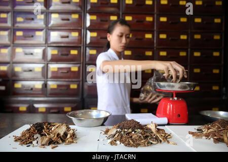 Phytothérapie thérapie, la médecine traditionnelle chinoise la pharmacie, Ho Chi Minh City, Vietnam, Indochine, Banque D'Images