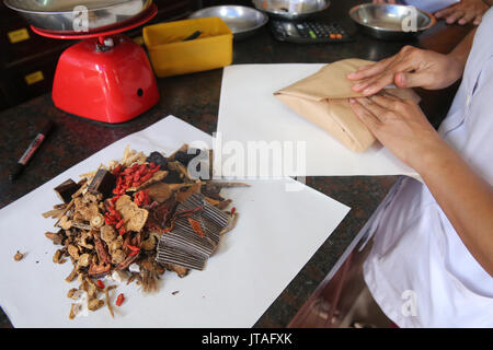 Pharmacie de la médecine traditionnelle chinoise, la phytothérapie, la thérapie de Ho Chi Minh Ville, Vietnam, Indochine, Banque D'Images