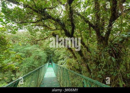 Suspension Suspension Bridge dans la réserve de la forêt nuageuse de Monteverde Costa Rica Banque D'Images