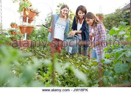 La mère et les filles de Latina watering plants in vegetable garden Banque D'Images