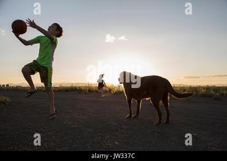 USA (Colorado), Boy (8-9) à jouer au ballon à côté de labrador chocolat et little girl (4-5) s'exécutant en arrière Banque D'Images