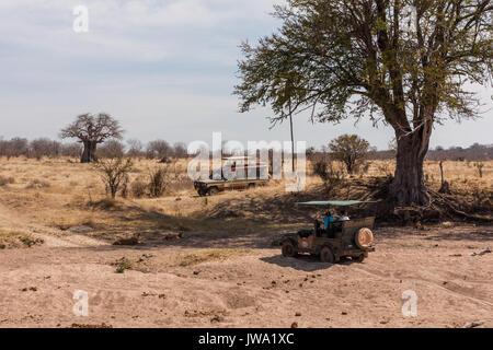 Les touristes dans les véhicules de safari profitez d'un safari dans le parc national de Ruaha, Tanzanie