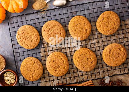 Fall the snickerdoodle cookies à la citrouille Banque D'Images