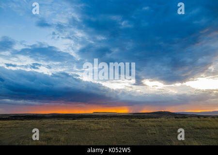 Vue paysage panoramique: gris nuages de tempête de recueillir plus de la savane avec pluie imminente au coucher du soleil, Masai Mara, Kenya