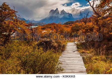 Belle automne à Torres del Paine, Chili Banque D'Images