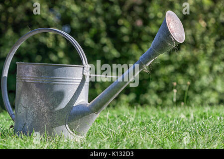 Un arrosoir en métal sur l'herbe fraîchement tondue. Banque D'Images