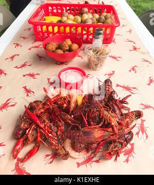 Close up image of chaud fraîchement bouillie Louisiane la langouste et les crevettes se propager sur table avec des pommes de terre, hushpuppies, et des épis de maïs