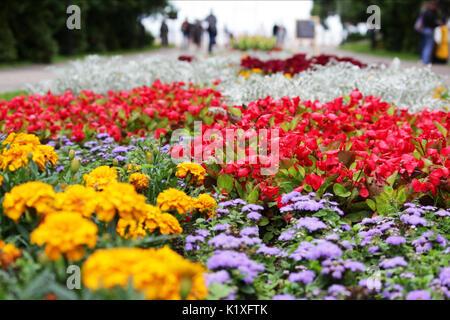 Beautiful Variete De Fleurs De Jardin Pictures - House Design ...
