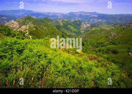 Paysage de montagnes en été 24. Picos de Europa, l'Espagne, Asturies Banque D'Images