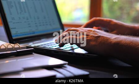 L'homme l'entrée de chiffres dans speadsheet sur ordinateur portable avec écran, à l'intérieur dans des conditions Banque D'Images