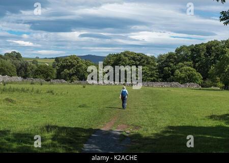 Sous le ciel bleu, une seule femme walker chefs loin aux beaux Dales Way sentier près de Linton Falls, Malham, Wharfedale, Banque D'Images