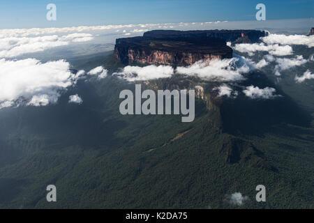 Le Roraima est le plus haut de la chaîne de Pakaraima Tepuis les plateaux en Amérique du Sud, Pakarajma Phillipai, Banque D'Images