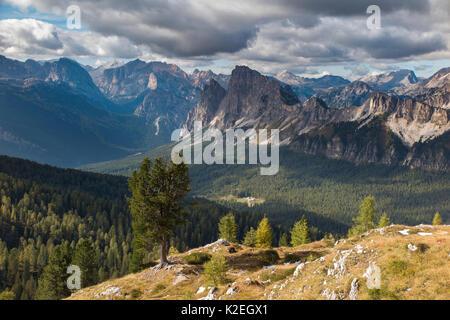 Une vue sur les Dolomites et Cristallo de Ciadin Luodo del, la province de Belluno, Vénétie, Italie, septembre. Banque D'Images