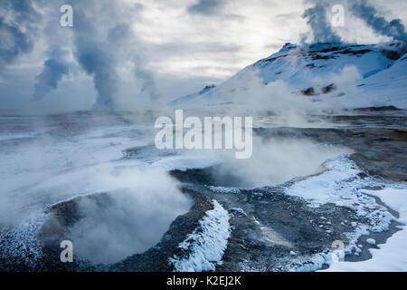Les geysers à Hverarond, près de Myvatn, nord-est de l'Islande, mars 2016. Banque D'Images