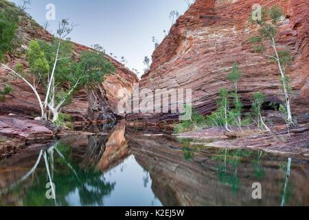 Avec les falaises et de stries dans la rivière Hamersley Gorge, parc national de Karijini, Pilbarra, dans l'ouest Banque D'Images