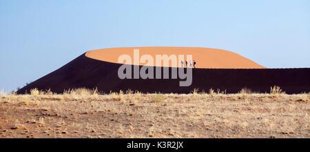 Les touristes marcher sur les dunes de sable façonné par le vent du désert du Namib Naukluft Deadvlei Sossusvlei Parc national en Afrique Namibie
