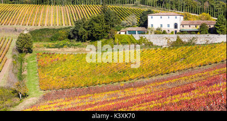 Paysage d'automne impressionnant,vue panoramique des vignobles,Toscane,Italie. Banque D'Images