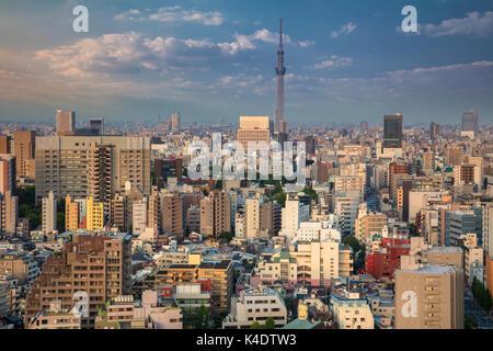 Tokyo cityscape. image de toits de Tokyo pendant le coucher du soleil au Japon. Banque D'Images