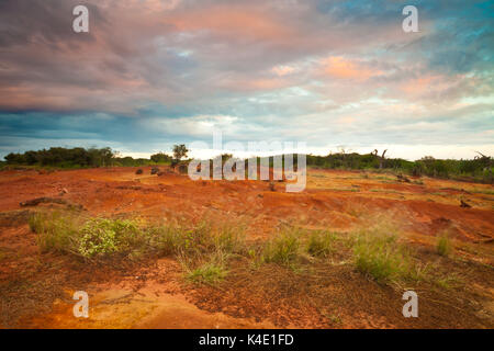 Soirée dans le parc national de Sarigua (désert), Herrera province, République du Panama.