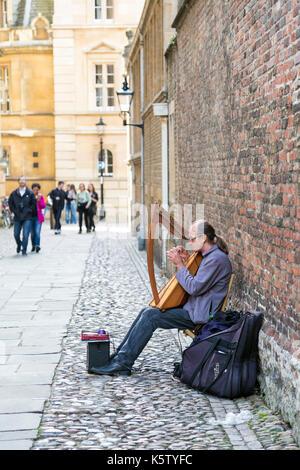Un harmoniciste de la rue sur le passage de la chambre du Sénat à Cambridge, UK Banque D'Images