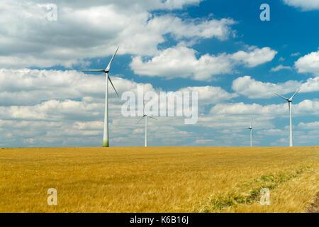Les générateurs éoliens dans un beau champ de blé. turbine éolienne,ferme éolienne, vent et les éoliennes. Vent Banque D'Images