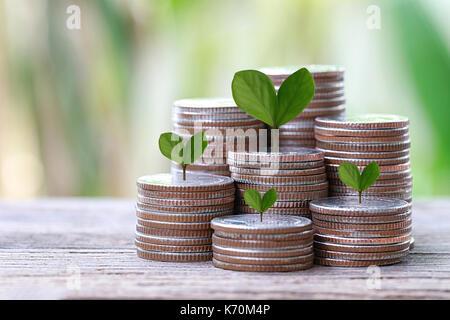 Pièce en argent de forme graphique et l'arbre vert haut de cultiver dans concept de l'investissement des entreprises Banque D'Images