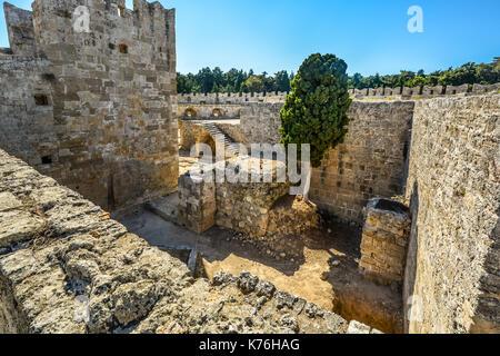 Un errant, feral cat se dresse au milieu des ruines de château de Rhodes à Rhodes, Grèce sur une journée ensoleillée