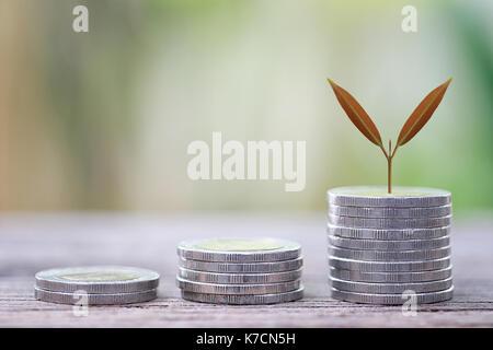 Pièce en argent de business graph dans la croissance et le tree top notion de profit et d'investissement. Banque D'Images