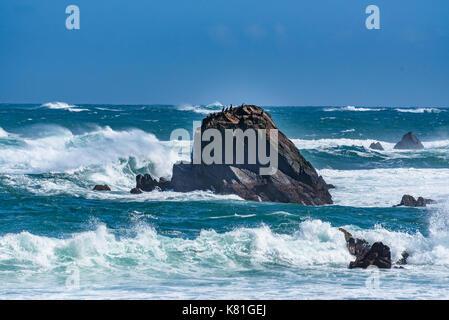 Les vagues déferlent sur les rochers le long de la côte de l'Alaska Banque D'Images
