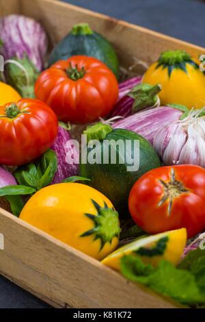Colorés frais légumes bio - petites courgettes, aubergines, tomates, nutrition concept, l'italien et le français, Banque D'Images