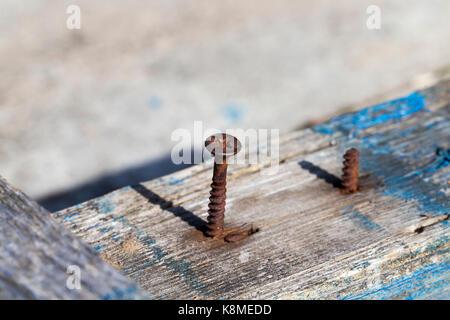 Planches et clous rouillés du vieux banc en bois de placés dans le parc. dans le bois il y a des traces de peinture bleue. photo close-up, petite profondeur