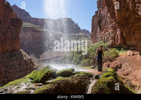 Un randonneur se tient sous les chutes de ruban large du North Kaibab Trail. Banque D'Images