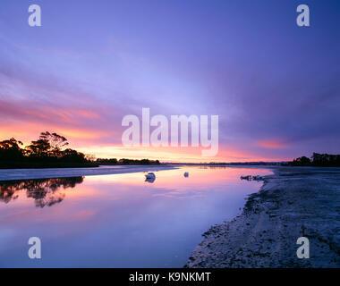 La Nouvelle-Zélande. Manukau Harbour. bottletop bay à l'aube. Banque D'Images