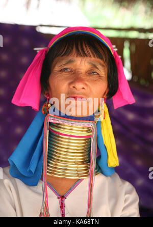 Closeup portrait of woman tribu païenne (Karen Padaung) long cou avec joints toriques sur le cou en Thaïlande. Banque D'Images