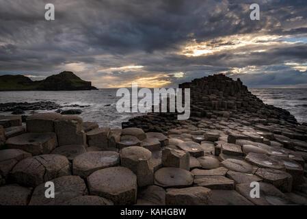 Les colonnes de basalte par la côte au coucher du soleil, Giant's Causeway, comté d'Antrim, en Irlande du Nord, Royaume-Uni