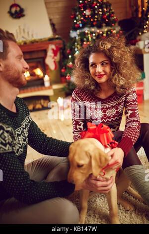 Boy chien comme surprise de Noël Banque D'Images