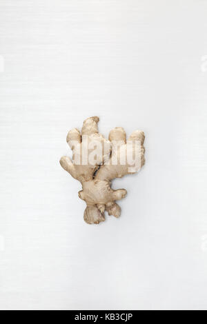 La racine de gingembre, arrière-plan blanc, gingers, racine de gingembre, nodule, nodule, de la santé, de l'ingrédient, Banque D'Images