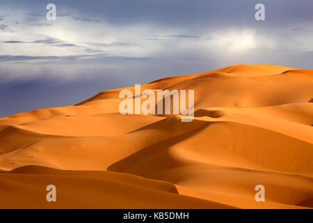 Les dunes de sable orange contre ciel d'orage, la mer de sable l'erg Chebbi, une partie du désert du Sahara, près de Merzouga, Maroc, afrique du nord